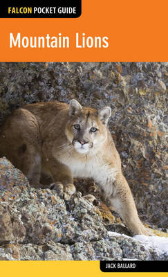 Mountain Lions - Falcon Pocket Guides (Paperback)