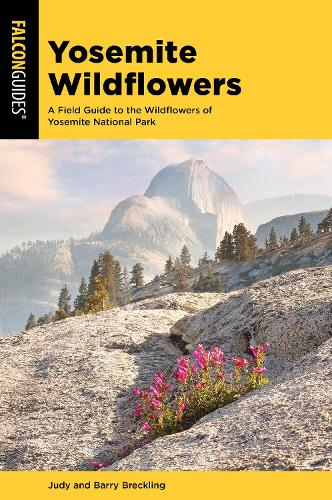 Yosemite Wildflowers: A Field Guide to the Wildflowers of Yosemite National Park - Wildflower Series (Paperback)