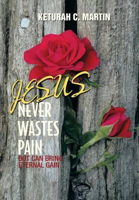 Jesus Never Wastes Pain (Hardback)