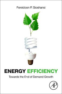 Energy Efficiency: Towards the End of Demand Growth (Paperback)