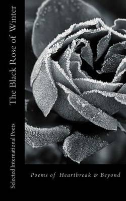 The Black Rose of Winter (Paperback)