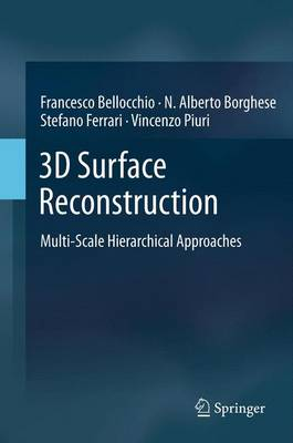 3D Surface Reconstruction: Multi-Scale Hierarchical Approaches (Paperback)