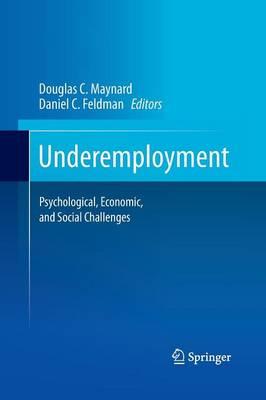 Underemployment: Psychological, Economic, and Social Challenges (Paperback)