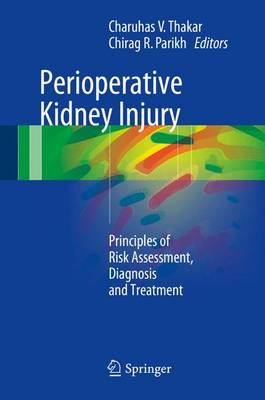 Perioperative Kidney Injury: Principles of Risk Assessment, Diagnosis and Treatment (Hardback)