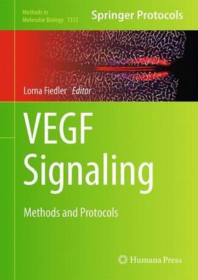 VEGF Signaling: Methods and Protocols - Methods in Molecular Biology 1332 (Hardback)