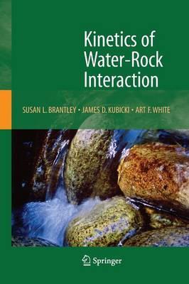 Kinetics of Water-Rock Interaction (Paperback)
