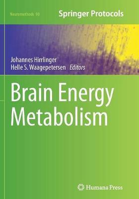 Brain Energy Metabolism - Neuromethods 90 (Paperback)