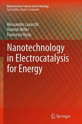 Nanotechnology in Electrocatalysis for Energy - Nanostructure Science and Technology 170 (Paperback)