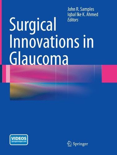 Surgical Innovations in Glaucoma (Paperback)