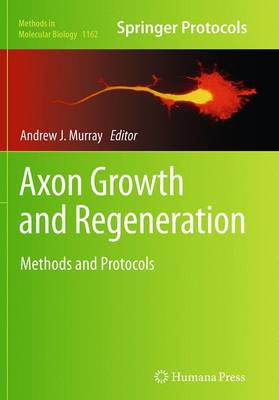 Axon Growth and Regeneration: Methods and Protocols - Methods in Molecular Biology 1162 (Paperback)