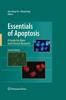 Essentials of Apoptosis: A Guide for Basic and Clinical Research (Paperback)