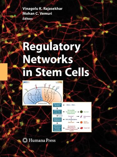 Regulatory Networks in Stem Cells - Stem Cell Biology and Regenerative Medicine (Paperback)