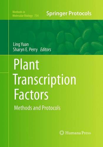 Plant Transcription Factors: Methods and Protocols - Methods in Molecular Biology 754 (Paperback)
