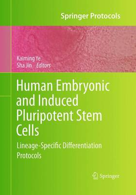 Human Embryonic and Induced Pluripotent Stem Cells: Lineage-Specific Differentiation Protocols - Springer Protocols Handbooks (Paperback)