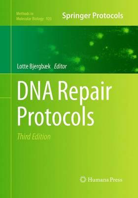 DNA Repair Protocols - Methods in Molecular Biology 920 (Paperback)