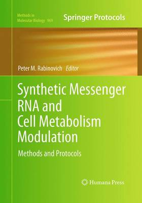 Synthetic Messenger RNA and Cell Metabolism Modulation: Methods and Protocols - Methods in Molecular Biology 969 (Paperback)