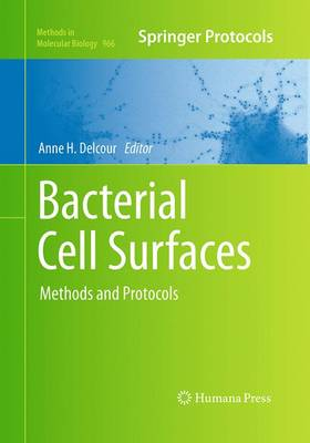 Bacterial Cell Surfaces: Methods and Protocols - Methods in Molecular Biology 966 (Paperback)