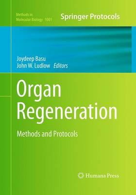 Organ Regeneration: Methods and Protocols - Methods in Molecular Biology 1001 (Paperback)