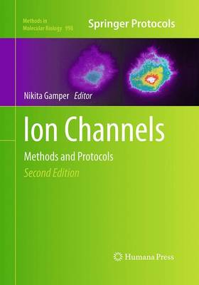 Ion Channels: Methods and Protocols - Methods in Molecular Biology 998 (Paperback)