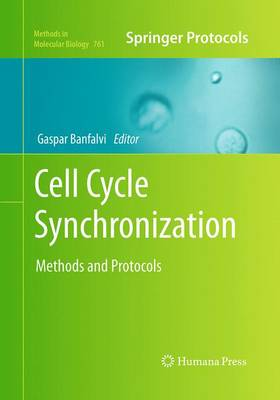 Cell Cycle Synchronization: Methods and Protocols - Methods in Molecular Biology 761 (Paperback)