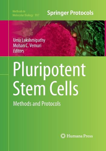 Pluripotent Stem Cells: Methods and Protocols - Methods in Molecular Biology 997 (Paperback)
