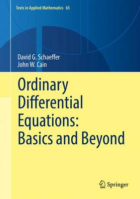Ordinary Differential Equations: Basics and Beyond - Texts in Applied Mathematics 65 (Hardback)