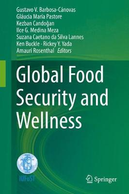 Global Food Security and Wellness (Hardback)