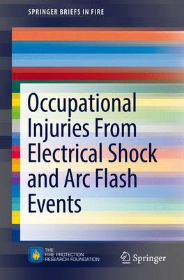 Occupational Injuries From Electrical Shock and Arc Flash Events - SpringerBriefs in Fire (Paperback)