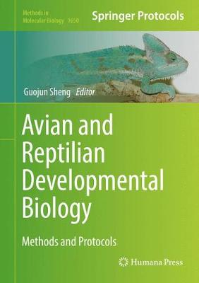 Avian and Reptilian Developmental Biology: Methods and Protocols - Methods in Molecular Biology 1650 (Hardback)