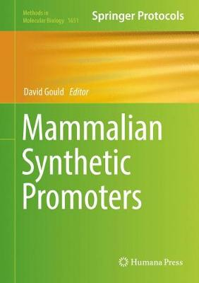 Mammalian Synthetic Promoters - Methods in Molecular Biology 1651 (Hardback)
