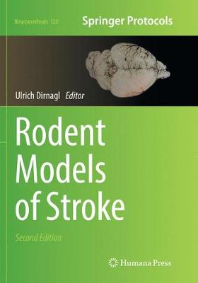 Rodent Models of Stroke - Neuromethods 120 (Paperback)