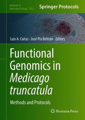 Functional Genomics in Medicago truncatula: Methods and Protocols - Methods in Molecular Biology 1822 (Hardback)