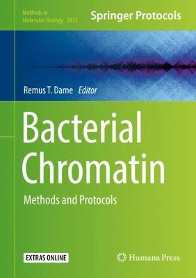 Bacterial Chromatin: Methods and Protocols - Methods in Molecular Biology 1837 (Hardback)