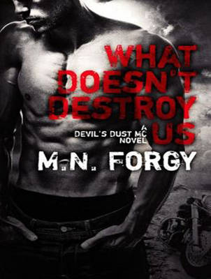 What Doesn't Destroy Us - Devil's Dust 1 (CD-Audio)