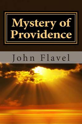The Mystery of Providence (Paperback)