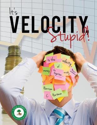It's Velocity Stupid! (Paperback)