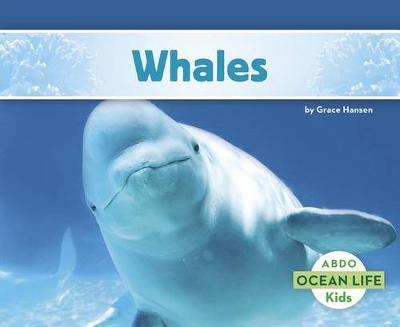 Whales - Ocean Life (Paperback) (Paperback)