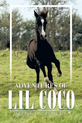 Adventures of Lil Coco (Paperback)