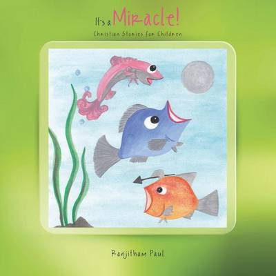 It's a Miracle!: Christian Stories for Children (Paperback)