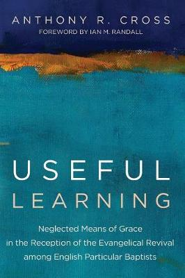 Useful Learning (Paperback)
