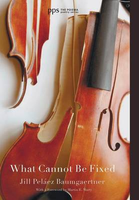 What Cannot Be Fixed (Hardback)