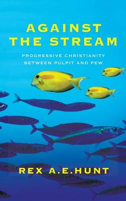 Against the Stream (Hardback)