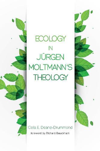 Ecology in Jurgen Moltmann's Theology (Paperback)