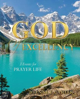 God of Excellency (Paperback)