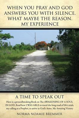When You Pray and God Answers You with Silence.What May Be the Reason. My Experience (Paperback)