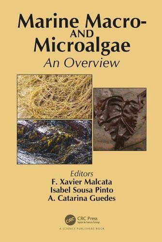 Marine Macro- and Microalgae: An Overview (Hardback)