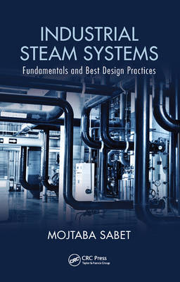 Industrial Steam Systems: Fundamentals and Best Design Practices (Hardback)