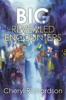 Big Revealed Encounters (Paperback)