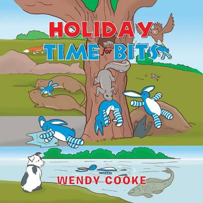 Holiday Time for Bits: The Adventures of a Toy Rabbit (Paperback)