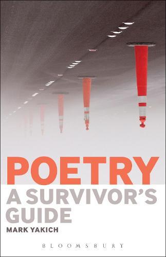 Poetry: A Survivor's Guide (Hardback)